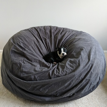 Ultimate Sack 4000 Bean Bag Chair Perfect For The Whole Family
