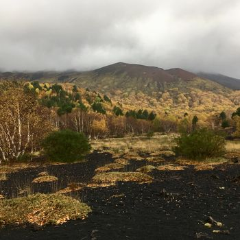 A Slope Of Mt. Etna During Our Rainy Day Hike