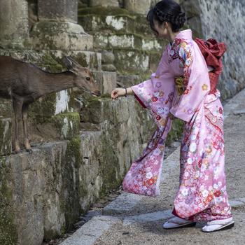 076b58f05d5 locals. locals. locals. Kyoto street. Mount Fuji