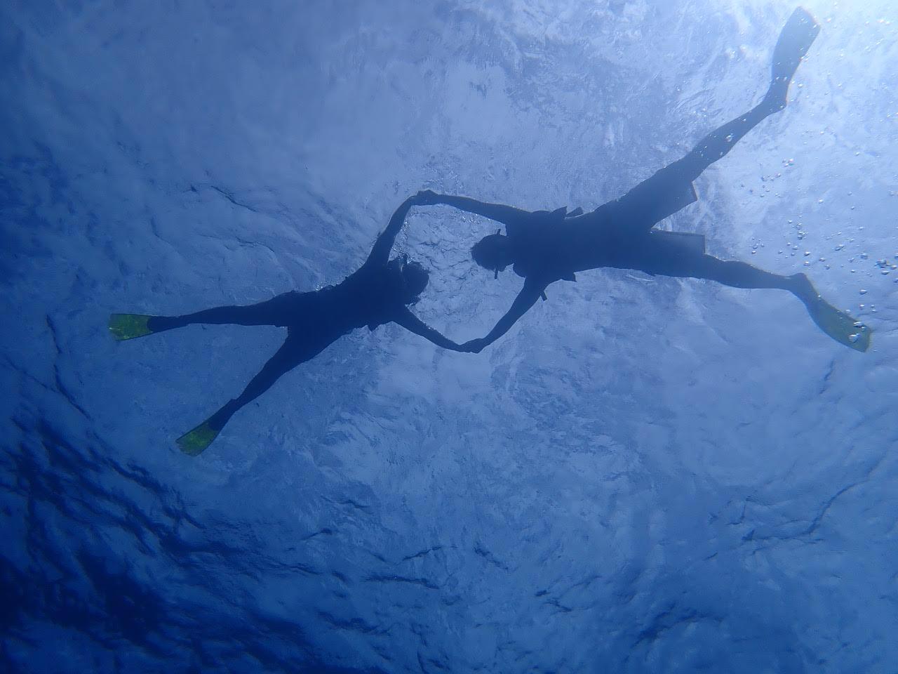 スタッフさんの漕ぐカヤックで10分程沖合に行き、そこでシュノーケリング。 合計約1時間のツアーでした。 カラフルなお魚は少なめでしたが、初めてウミガメを見ることが出来て楽しかったです(*^^*) 私は潜ることが出来ないので上から眺めるだけでしたが、写真をたくさんスタッフの方々撮ってくれて、20ドルでデータをメールで頂けました♫ ツアー代も写真代も他のオプショナルに比べてリーズナブルです。 繁華街近くきあるウエスティンホテルのビーチクラブへ集合なので送迎なしでも問題なく、シュノーケリング後にはすぐお買い物へと繰り出しました♫