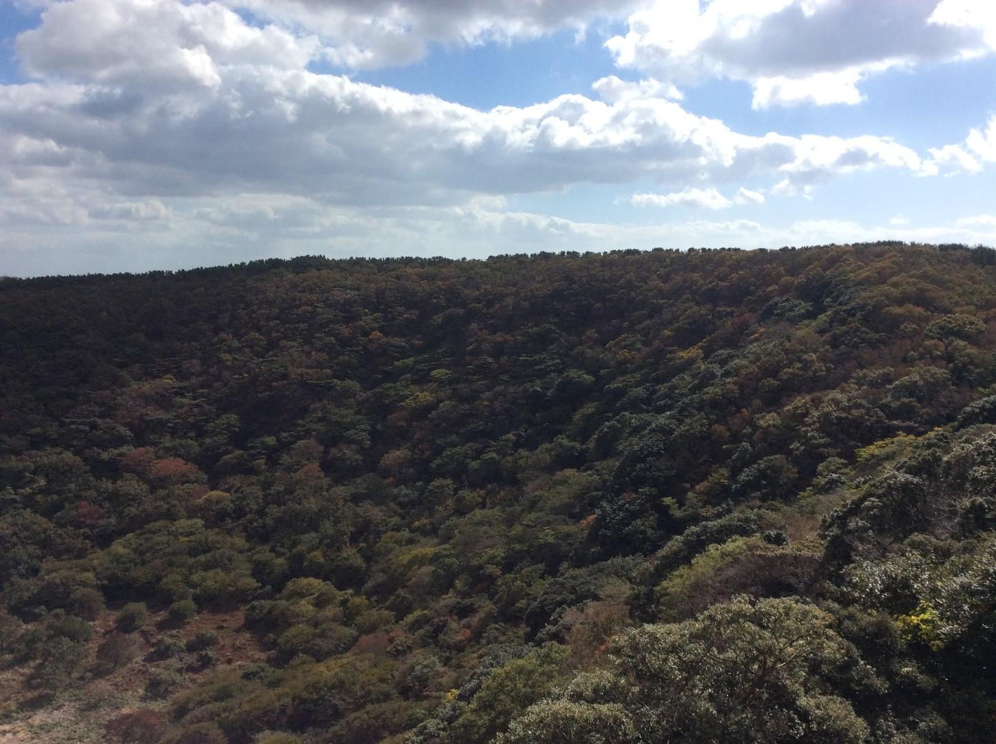一人で参加しました。姉妹のお二人と一緒にまわりました。 世界遺産を1日でコンパクトに回ることができ、楽しかったです。 それでも、城山日出峰や洞窟はしっかりまわれました。 ガイドさんも日本語ペラペラで、いっぱい済州島のことを教えてくれて、 満足です。