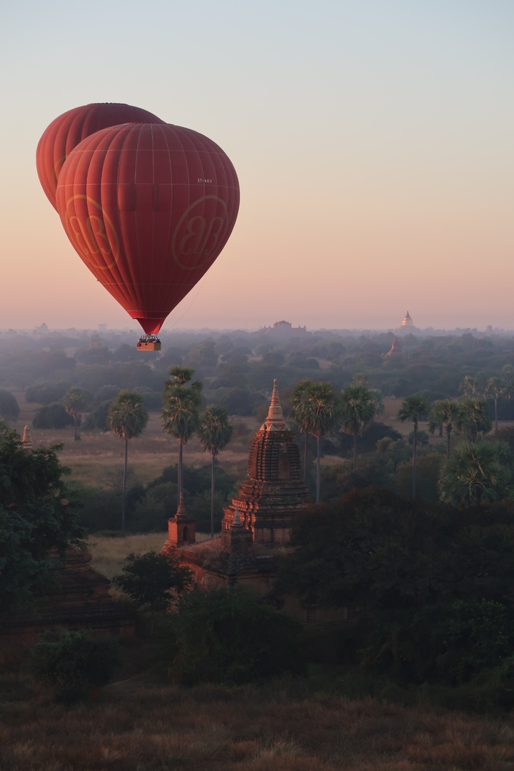 気球初体験。気球から見る日の出も遺跡もとても美しいものでした。飛行時間も1時間強あり、十分楽しめました。