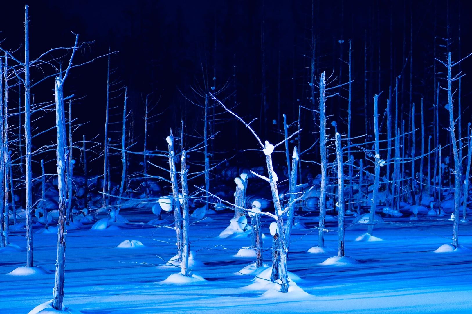 冬の青い池は初めてでしたが、ライトアップの点灯パターンがあり、時間によっては真っ暗か、薄暗くてあまり楽しめないです。写真撮るなら移動時間も含めて1時間くらいは必要かと思います。