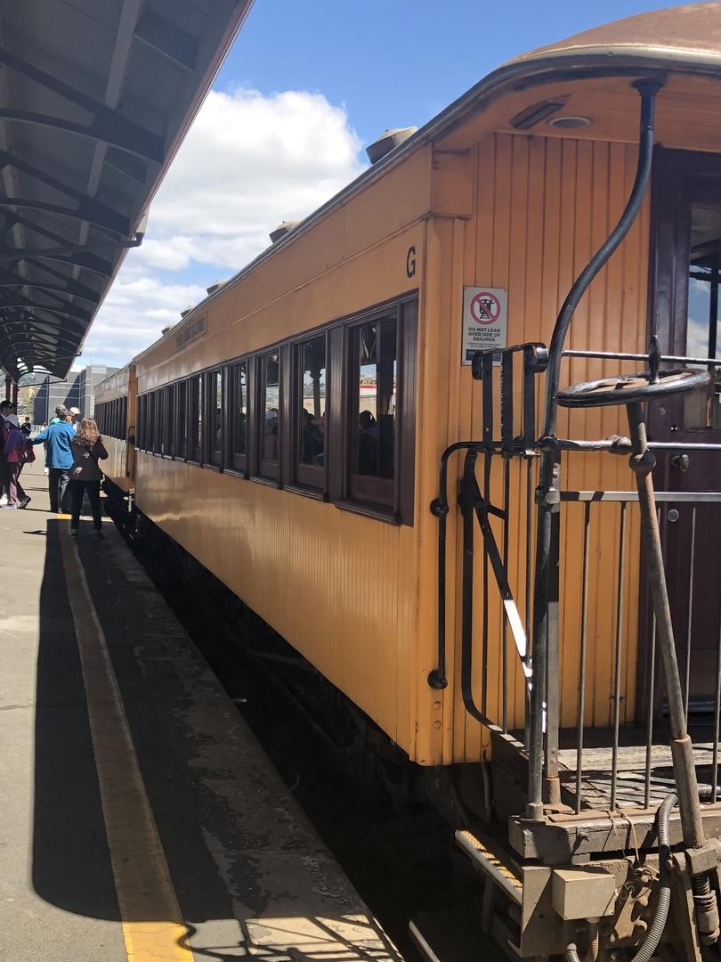 往復4時間ですが日常的にずれ込むようなので+1時間必要です。 この列車に乗車しなければ見る事の出来ないニュージーランドの大自然を堪能しました。 復路は同じ景色なので少し飽きるかと思っていましたが、往路で見逃した景色や感動した景色を再度見る事ができ満足でした。 見所では走行スピードを落として案内放送(英語のみ)もあります。