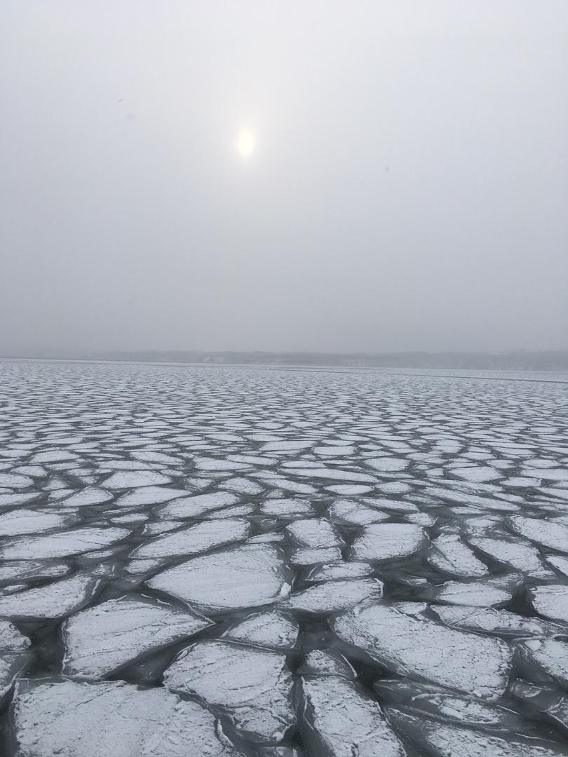 札幌からの日帰りバスツアーが実現できるか不安でしたが、ほぼ工程通りに進み、流氷もオジロワシも見ることができてとても満足しました。