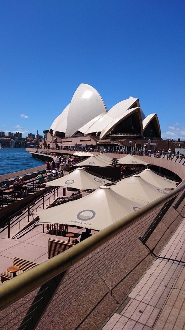 早朝にシドニー到着でしたが、この半日ツアーで、シドニーの外せない観光地を効率よく回れて、時間を有効活用出来たと思います。 個人では、こんなに効率よく回れません