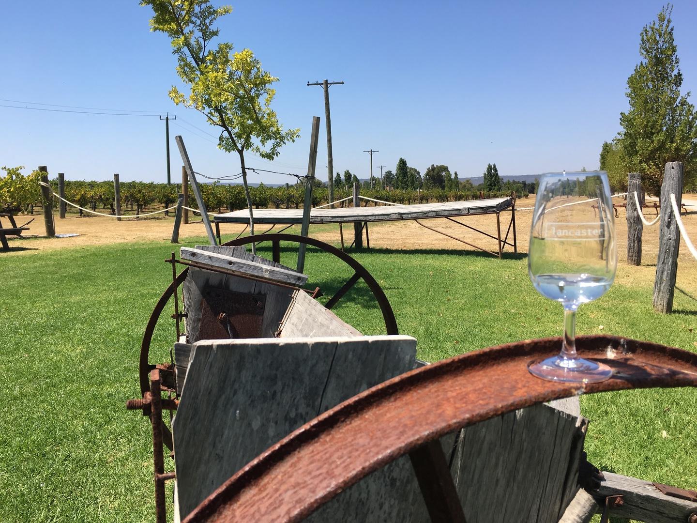 せっかくワイナリーツアーに参加したので、できる限り多くのワイナリーを巡りたく7.5時間の本ツアーに参加。結果、6軒のワイナリー・ブルワリーを巡ることができました。 スワンバレーは比較的白が多くつくられているようで、スパークリングワインと白ワインが多め、マーガレットリバーで育てている赤品種を最後に頂くところが多かったように思います。 できれば12本購入し持ち帰りたかったですが残念ながらどこのワイナリーも空輸用のダンボールを販売しておらず、断念しました。