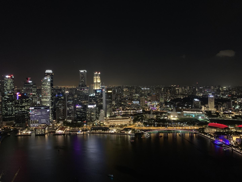 マリーナ・ベイ・サンズのスカイパーク(屋上)からの夜景を見るために午後7時頃に上りました。チケットは購入済みでしたので、待ち時間もあまり無くスムーズでした。スカイパークのエレベーターが、一度ホテルを出てからになります。シンガポールは、地震が無いので高層ビルが隙間なく乱立しているので、その夜景はとても素晴らしく綺麗でした。
