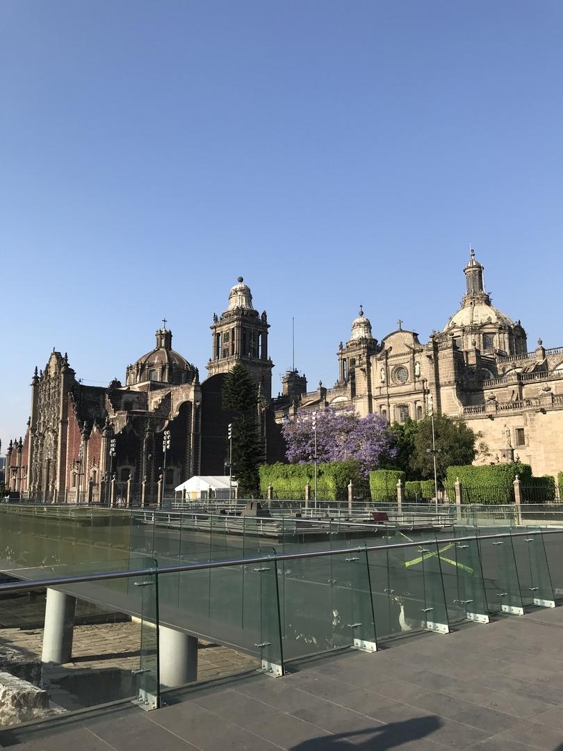 メキシコの歴史、文化について非常に丁寧に説明頂き勉強になりました。有難うございました。