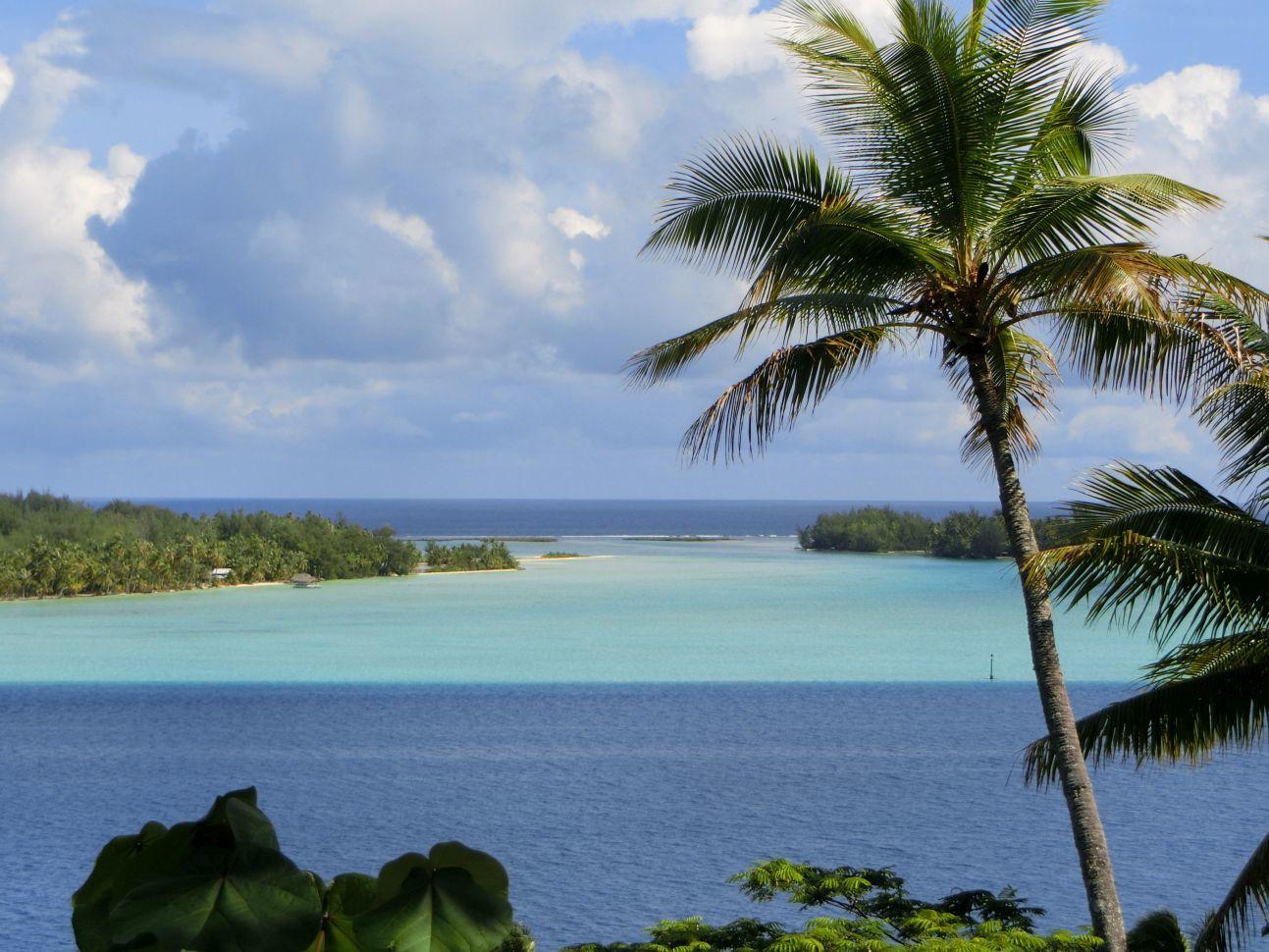 ボラボラ島は公共交通機関がないので、島内観光ツアーに参加した。 ジープでしか行けない高台3か所に行き、海を眺めることができた。 青や水色などの海の色の違いが、とても美しく感動ものだった。 教会や寺院跡などの説明もあったし、ガイドさんの奥様手作りの 美味しいグアバジャムもクラッカーと一緒に試食させていただき、 とても有意義なツアーだった。