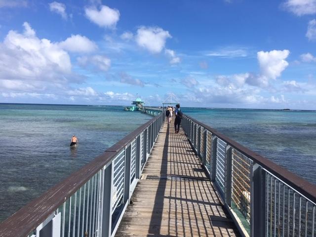 日時にもよると思いますが、海中展望台の魚の種類が少なかったかな。戦争の悲惨さを知るのには、いいツアーですが、もう少し地元よりの箇所も見たかったかなと。お昼ご飯はバイキングなので満足です。日本人ガイドの方はいい方でした。移動中も色々島内のことや、ここの場所は~~と色んなことを教えていただけます。なので一般の観光客のかたより詳しくなりますよ。