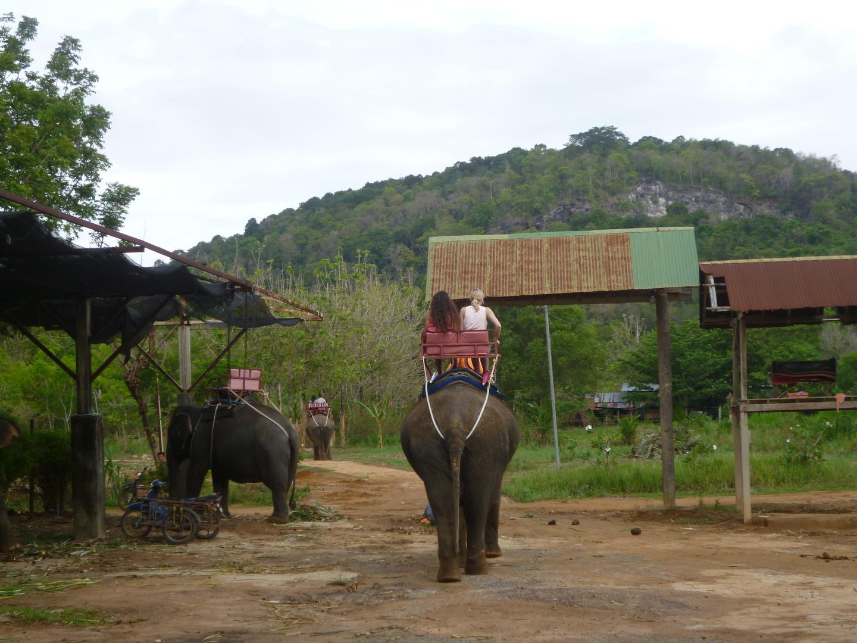 エレファントトレッキングは最初の15分は初めての経験でもあり楽しめたが45分は永すぎた。平坦な草地を途中象の食事(雑草を止まって食べる)に付き合わされて後半は飽きてきた。もう少し景色が良い(高台で海が見えるとか)と良かった。ただトレッキングが終わってからの子象のショーは象の曲芸やダンスは最高に楽しかった。