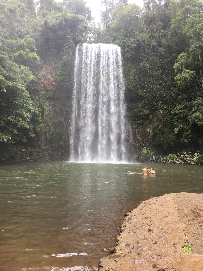 アサートン高原・パロネラパークのツアーで唯一ミラミラの滝へも行ってくれるツアーだったのでこちらを予約させてもらいました。 ガイドさんがとっても優しくて大満足でした。 英語ツアーとありますが私が行った時はGWで日本人が多かったので、ガイドさんの奥さん(日本人女性)が来てくださり、とても良くしていただきました。 個人経営のツアーガイドさんで参加も少人数だったので、とてもゆっくりできました。  バリン湖前のカフェで食べたデボンシャーティー(スコーンとお茶)は最高なので、必ず食べていただきたいです。  ミラミラの滝での滞在は10分程度で写真を撮ったりするだけですが、マイナスイオンたっぷりでとっても気持ちいいです。遊泳可能な場所なので季節が良ければ入れるかもしれません。  パロネラパークには専属のガイドがいますので案内してもらえます。私が行った時にはユリシス蝶も見れました。  ガイドさんは自然にも詳しく色んなものを見せてくださるので、とてもオススメです。