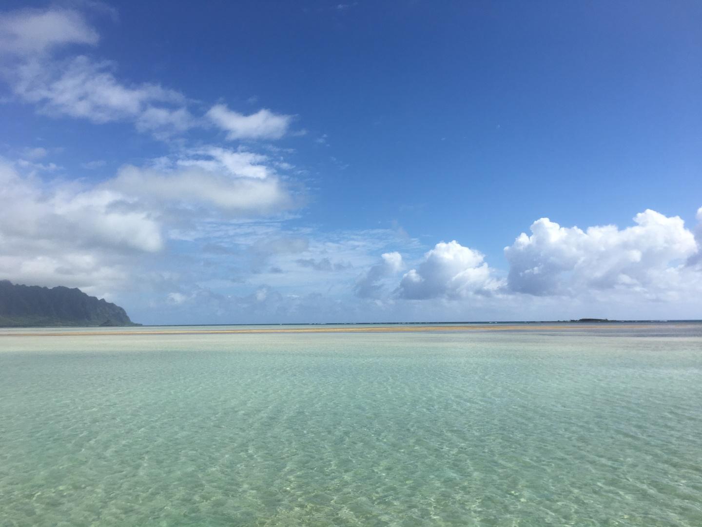 5/20に行きました!最高でした!青い空、青い海、本当に天国の海!幸運な事に潮が引いていて上陸もできました!ガイドさんもこの時間帯で潮が引いているのは珍しいとのことでした。マリンスポーツもどれか1つなのかなーっと思っていたらすべてさせてもらい大満足!本当に行ってよかった!ハワイに行くならぜひ行って欲しいです!ただ天候、気候、潮の満ち引きあるので運がいるかも?!
