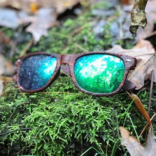 7e96a194b21 Classic - Emerald Timber Polarized  ShadyRays  LiveHard  sunglasses  shades
