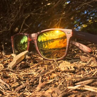 c3ba31bb0f8 We found the end of the rainbow. Classic - Golden Timber Polarized   ShadyRays