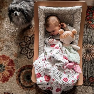 92fe70c5081 Hoping your weekend is as cozy as this little one s is shaping up to be!