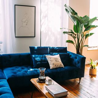 Why Did @alinatsvor Choose Our Ms. Chesterfield Sofa In Oxford Blue Mod  Velvet?